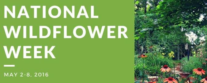 nATIONAL WILDFLOWER WEEK (1)