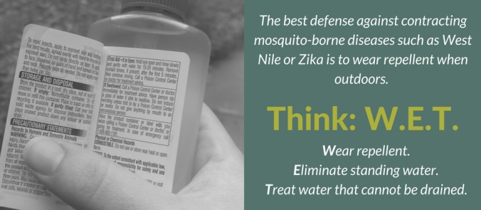 Think WET Mosquito Blog