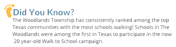 dyk-township-scools