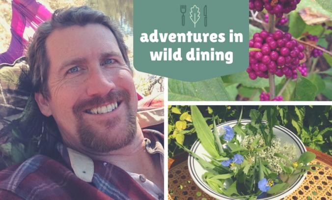 adventures-in-wild-dining-1