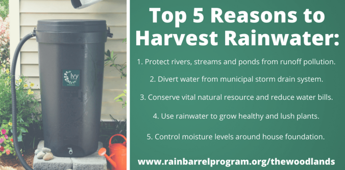 Top 5 Reasons to Harvest Rainwater-