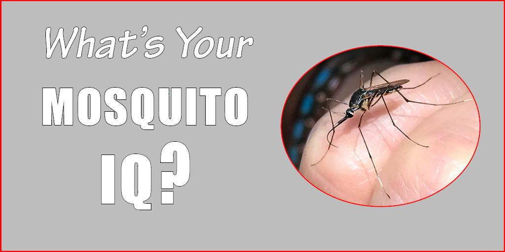mosquitoIQ 2