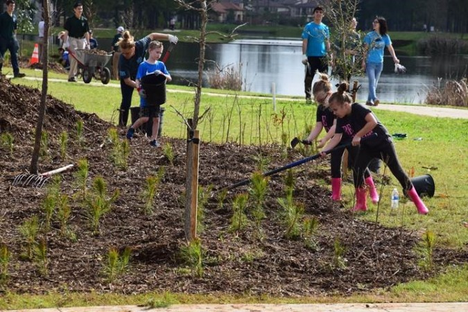 village tree planting 2