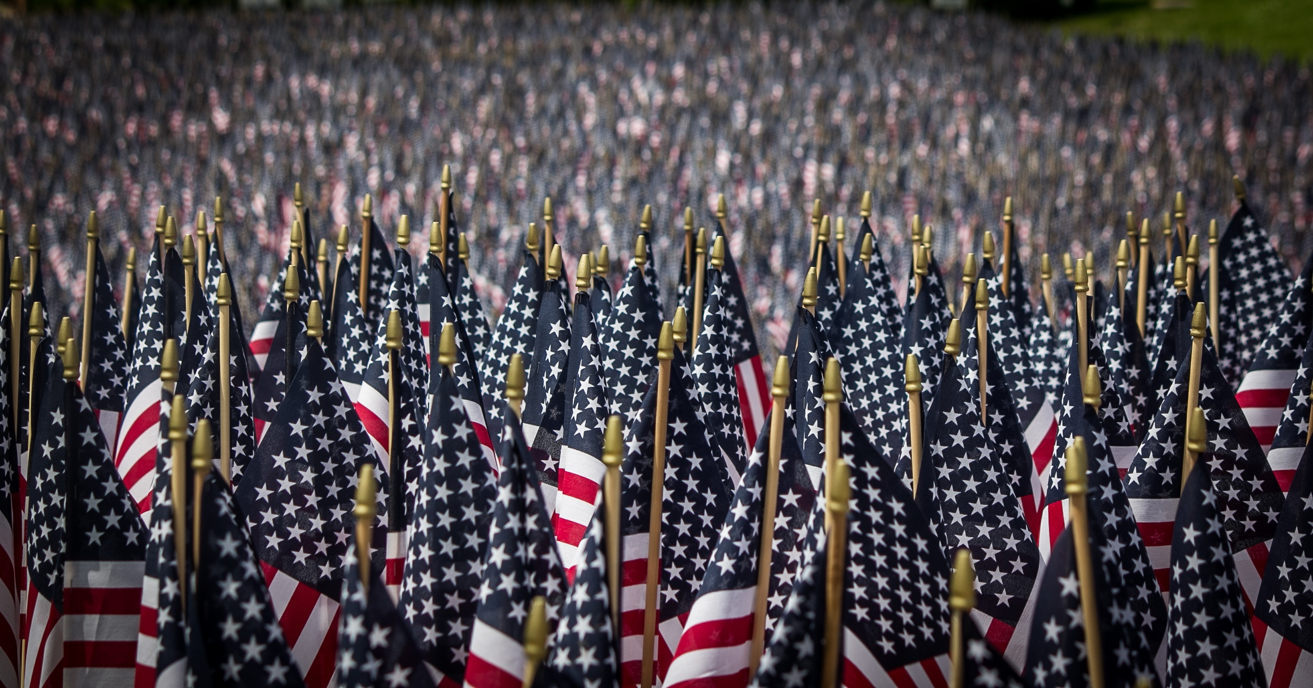 Mem Day - American Flags