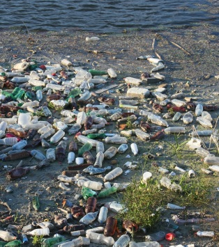 bottles-cropped
