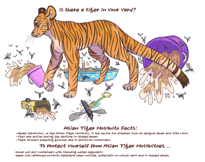 tiger text_mbirdwell2018