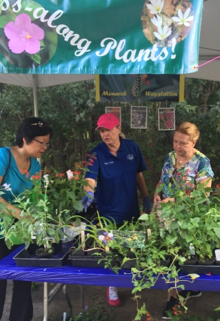 Grab a FREE plant at the Pass-along Plant booth