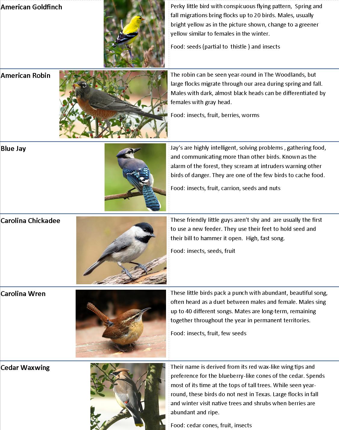 Backyard Bird chart.page 1